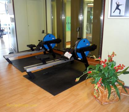 Norwegian Dawn fitness center